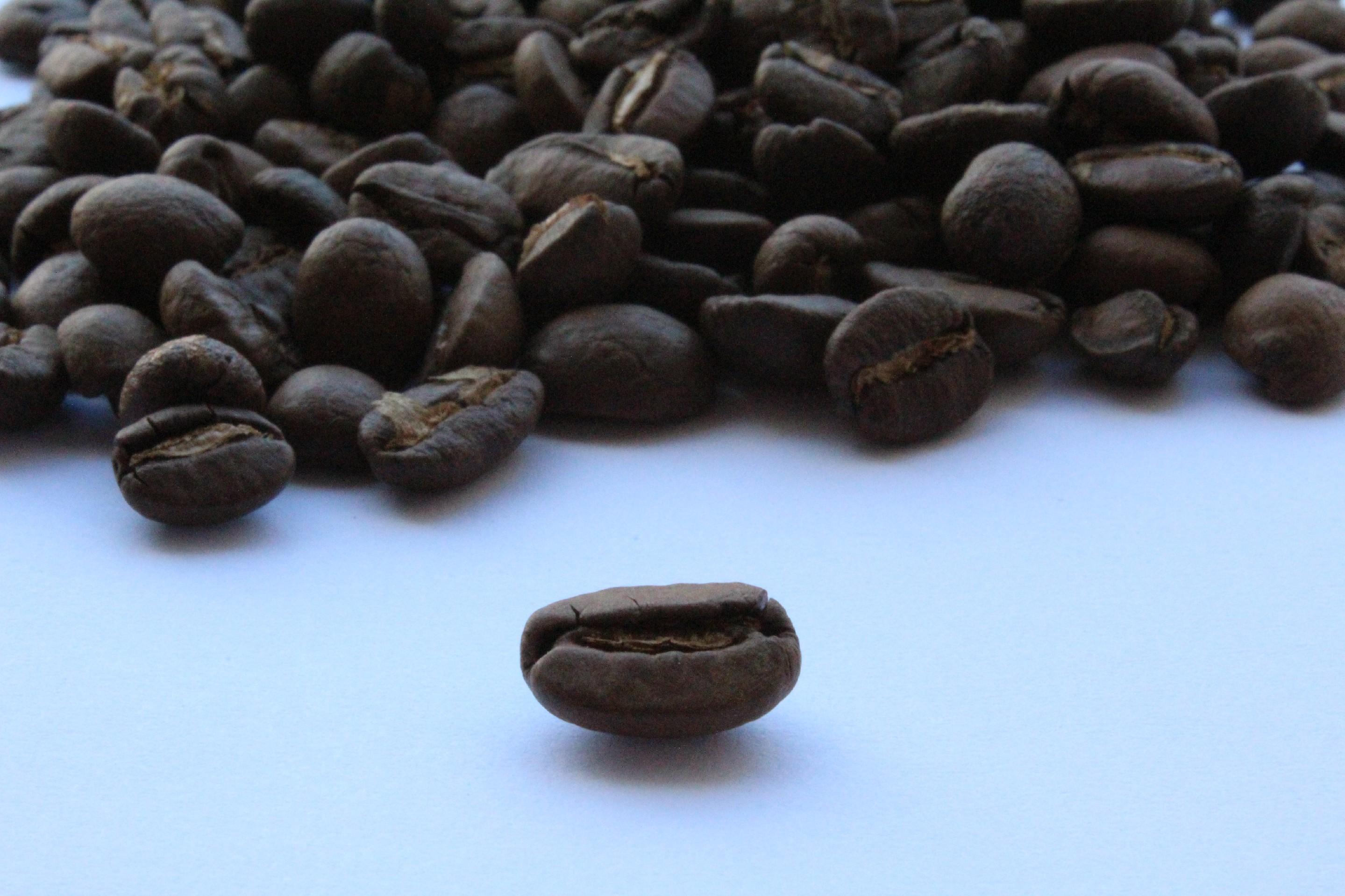 BotaCoffee Honduras SHG ep, Coop. Cocatecal, La Campa in Lempira (1kg) Mletí kávy: Zrnková