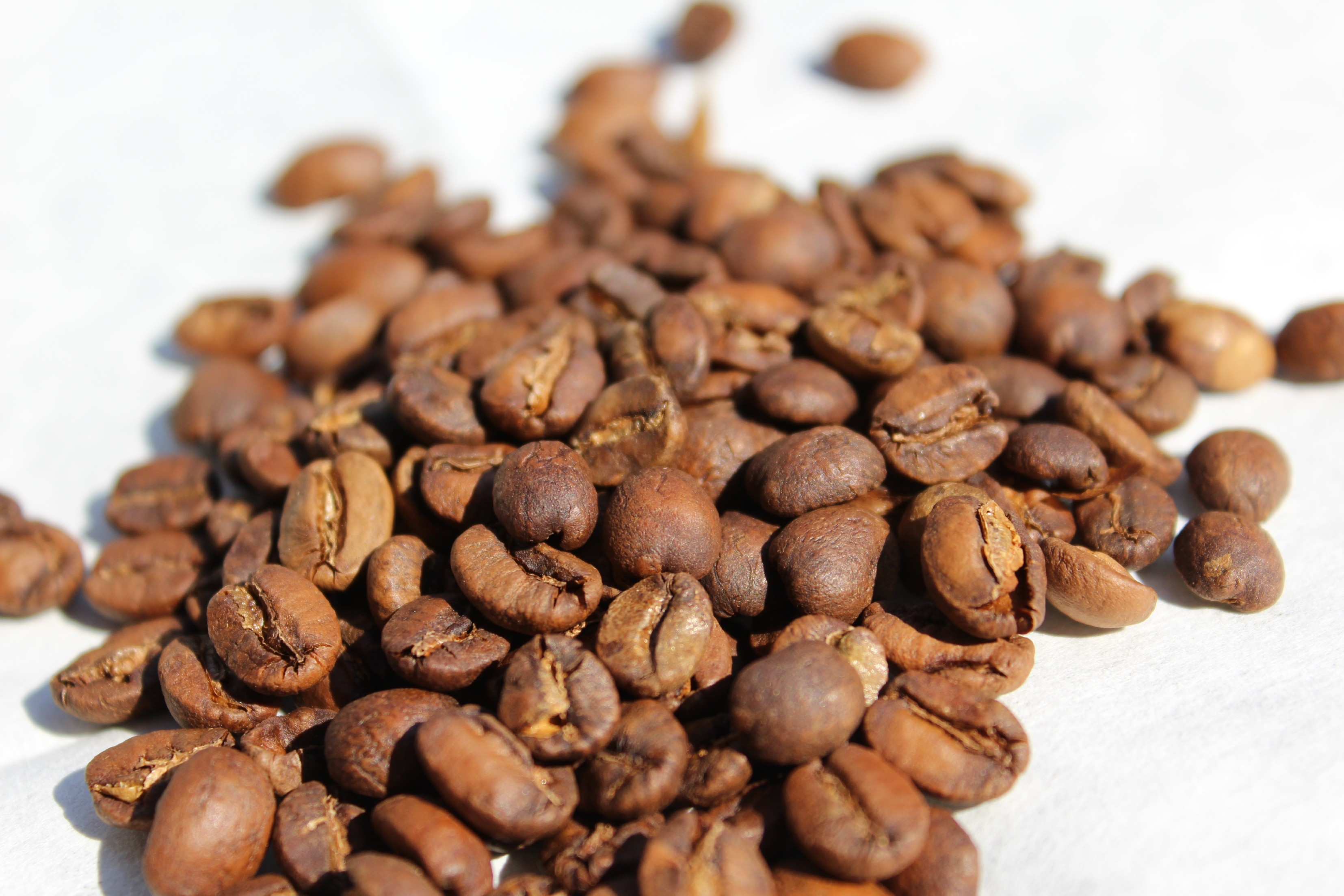 BotaCoffee Brazil Obata Fazenda da Lagoa Estate, Sul de Minas, NY2/3, Scr. 16/17, semi washed (250g) Mletí kávy: Zalévaná káva (český turek)