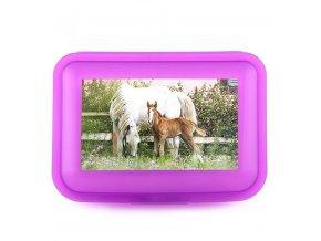 Svačinový box malý Horses Dreams
