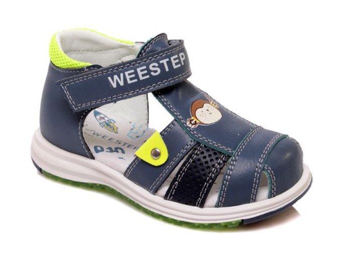 wee step5