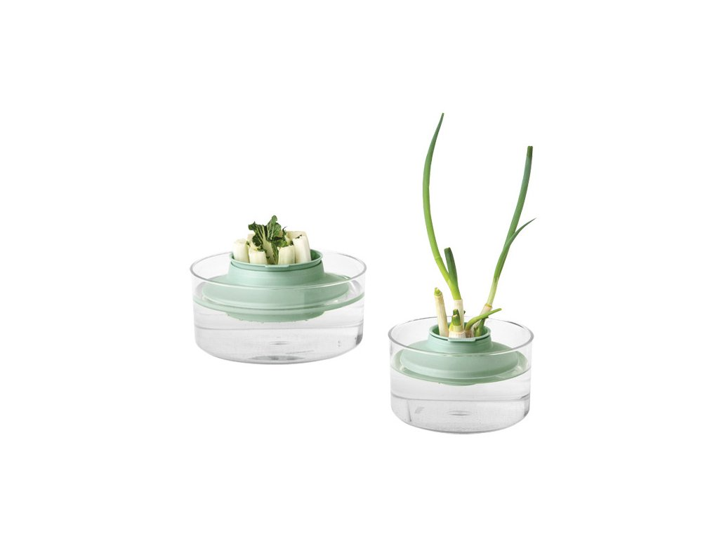 Herbs and Vegetables Regrow Kit, TASTY+ Jade Green 8710755124402 Brabantia 96dpi 1000x1000px 7 NR 15419