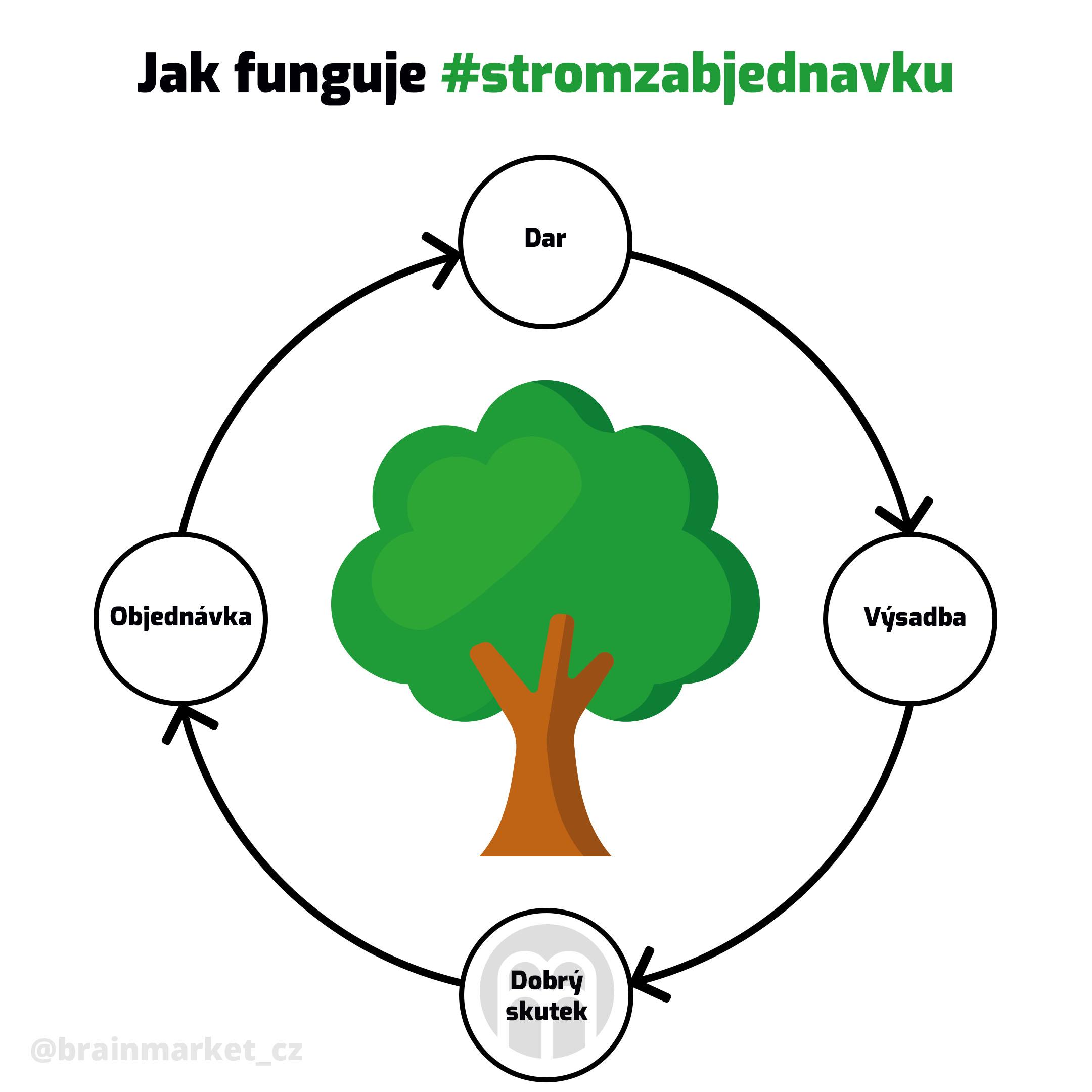 Za každou vaši objednávku nad 2000 Kč vysadíme jeden strom #stromzaobjednavku