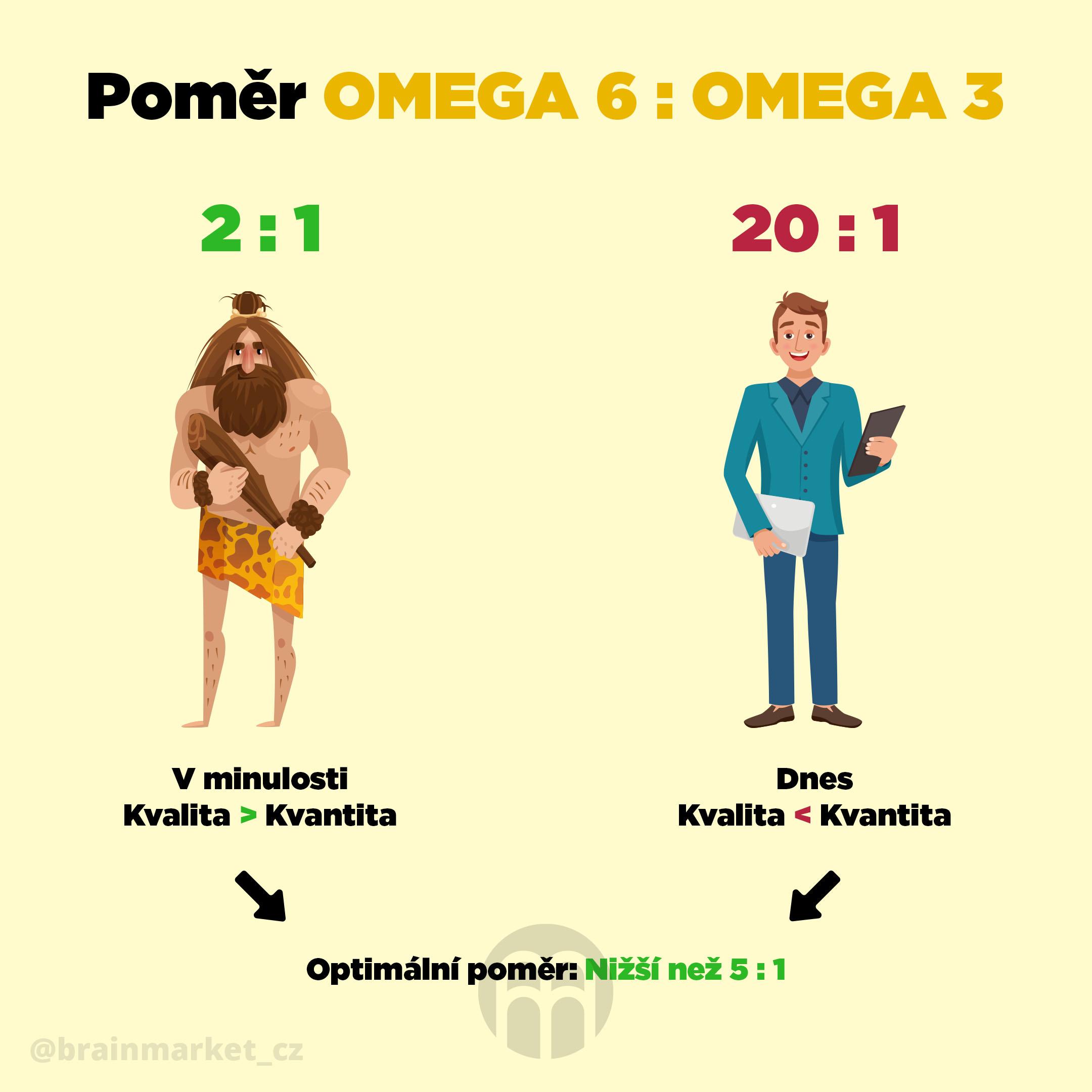 Poměr omega-6:3 mastných kyselin a proč je nezbytný pro optimální zdraví