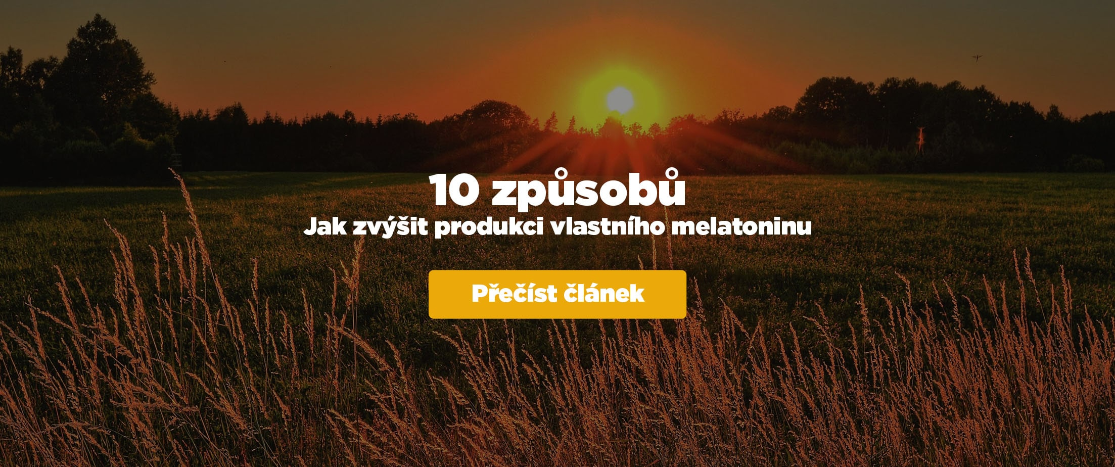 10 zpusobu melatonin