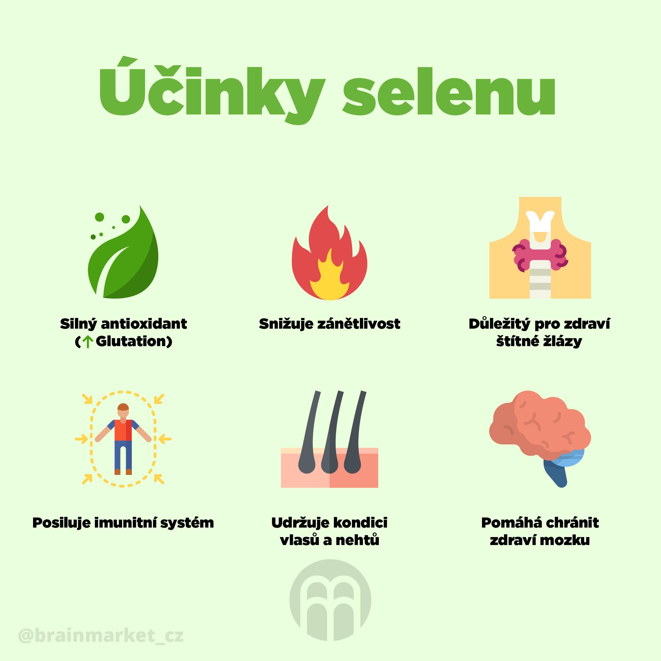 selen_infografika_brainmarket_CZ