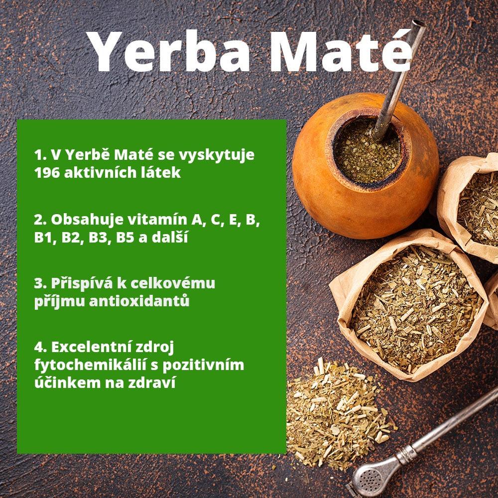 yerba-mate-V2
