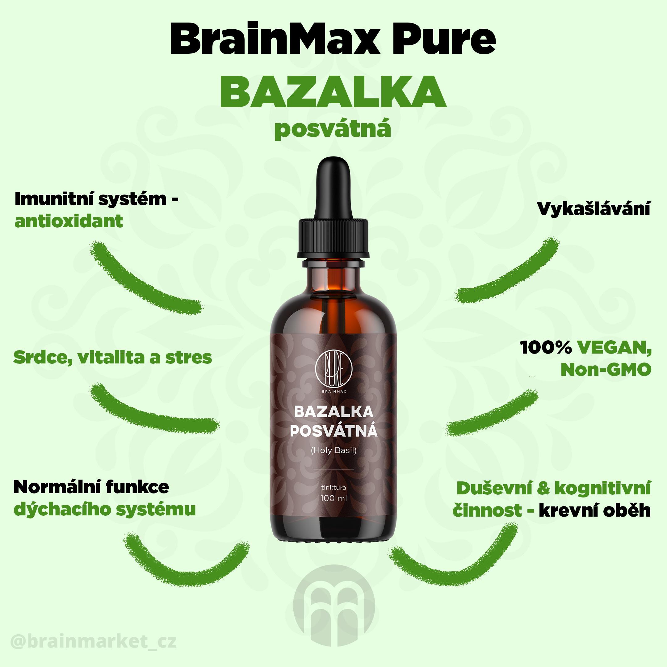 bazalka_infografika_brainmarket_cz