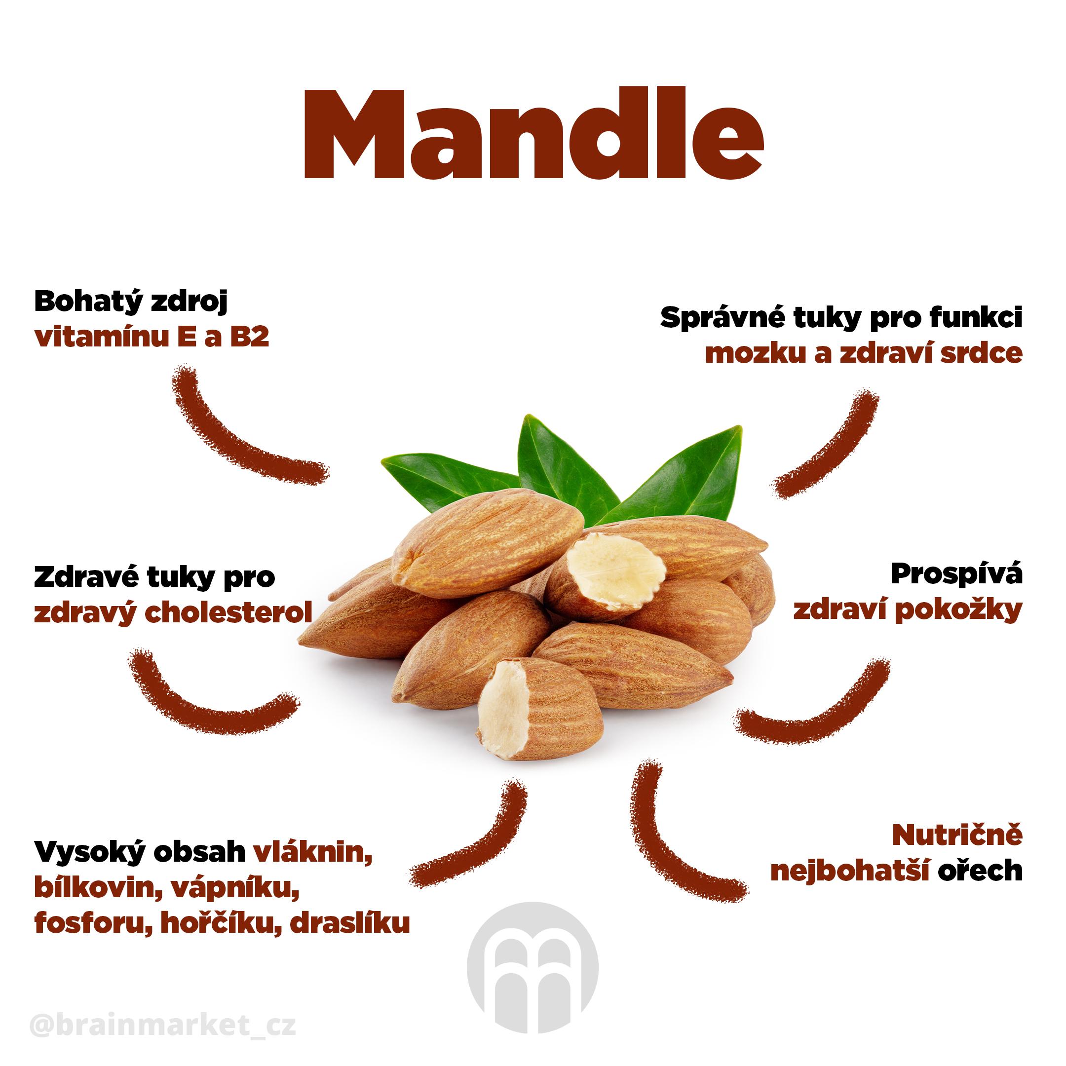 mandle-infografika-brainmarket-cz
