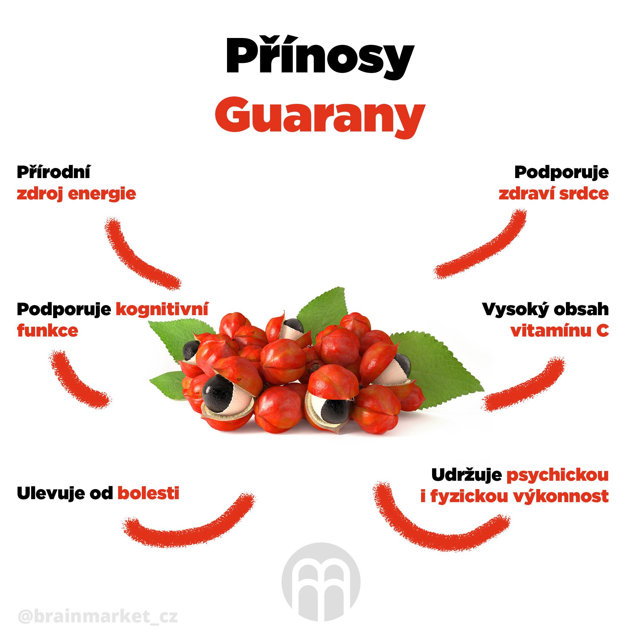 prinosy-guarany-infografika-brainmarket-cz