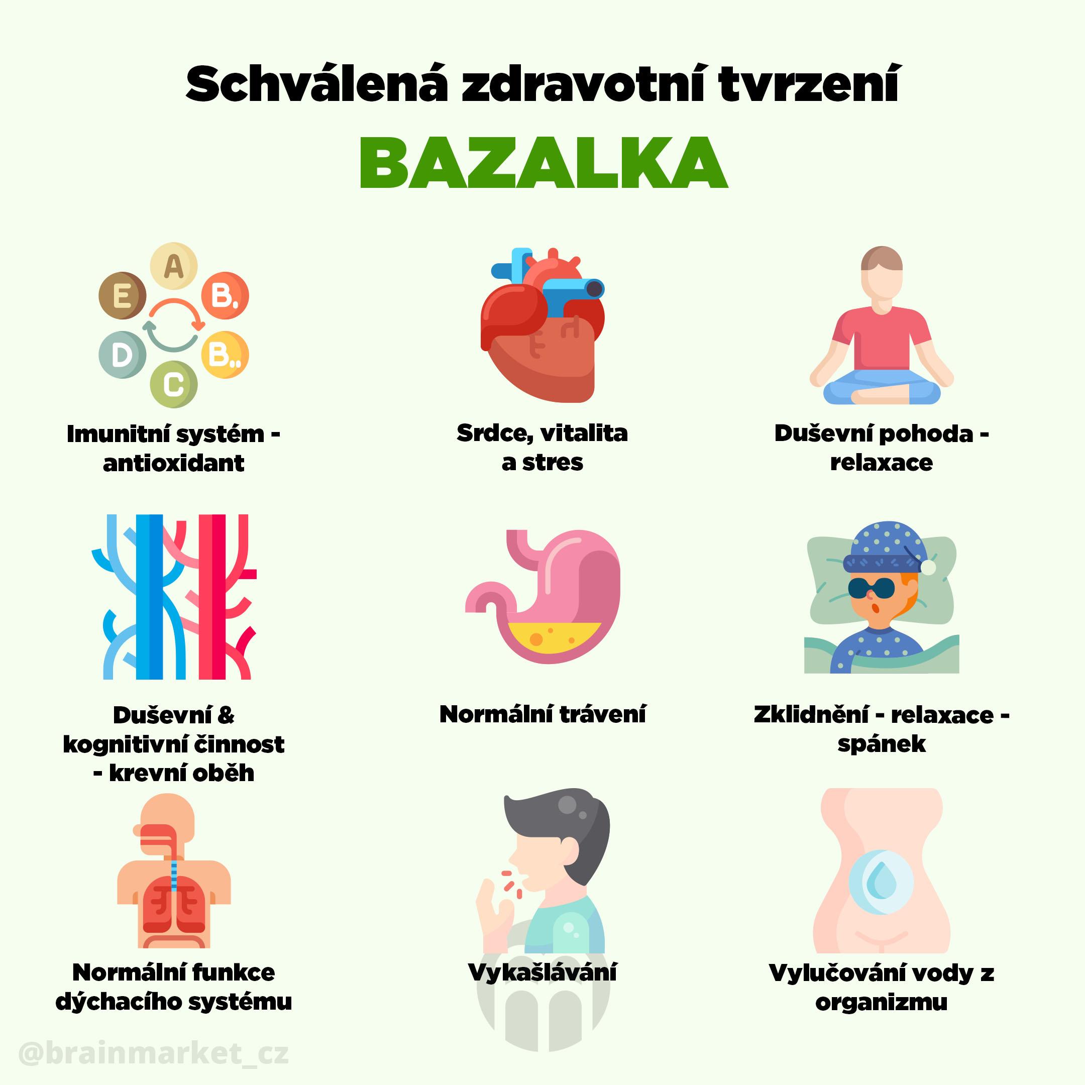 schvalena_zdrav_bazalka_infografika_brainmarket_cz