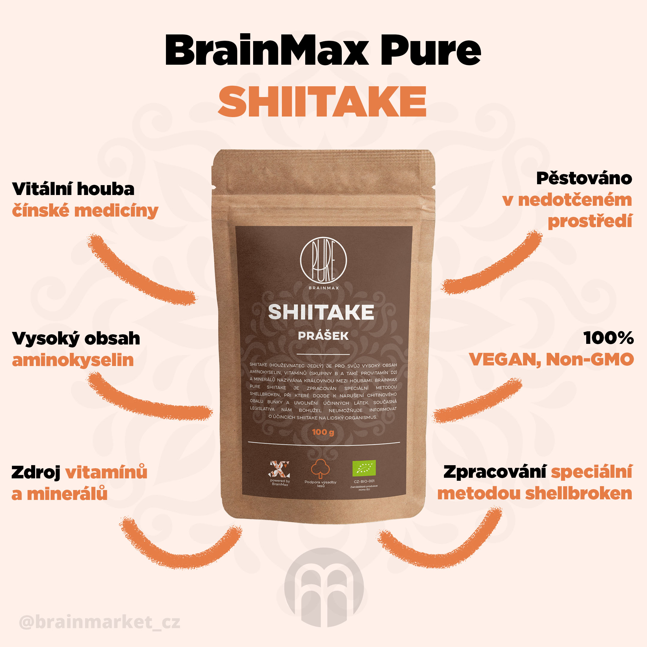 shiitake_pavucina_infografik_brainmarket_cz