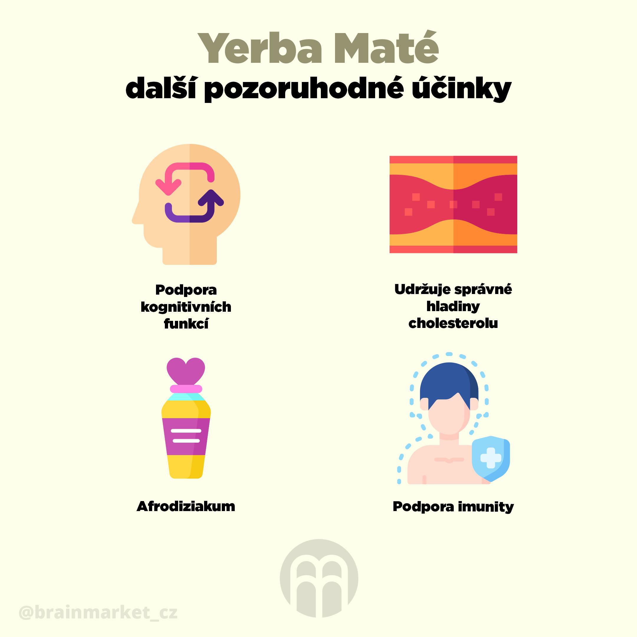 yerba_mate_infografika_brainmarket_cz