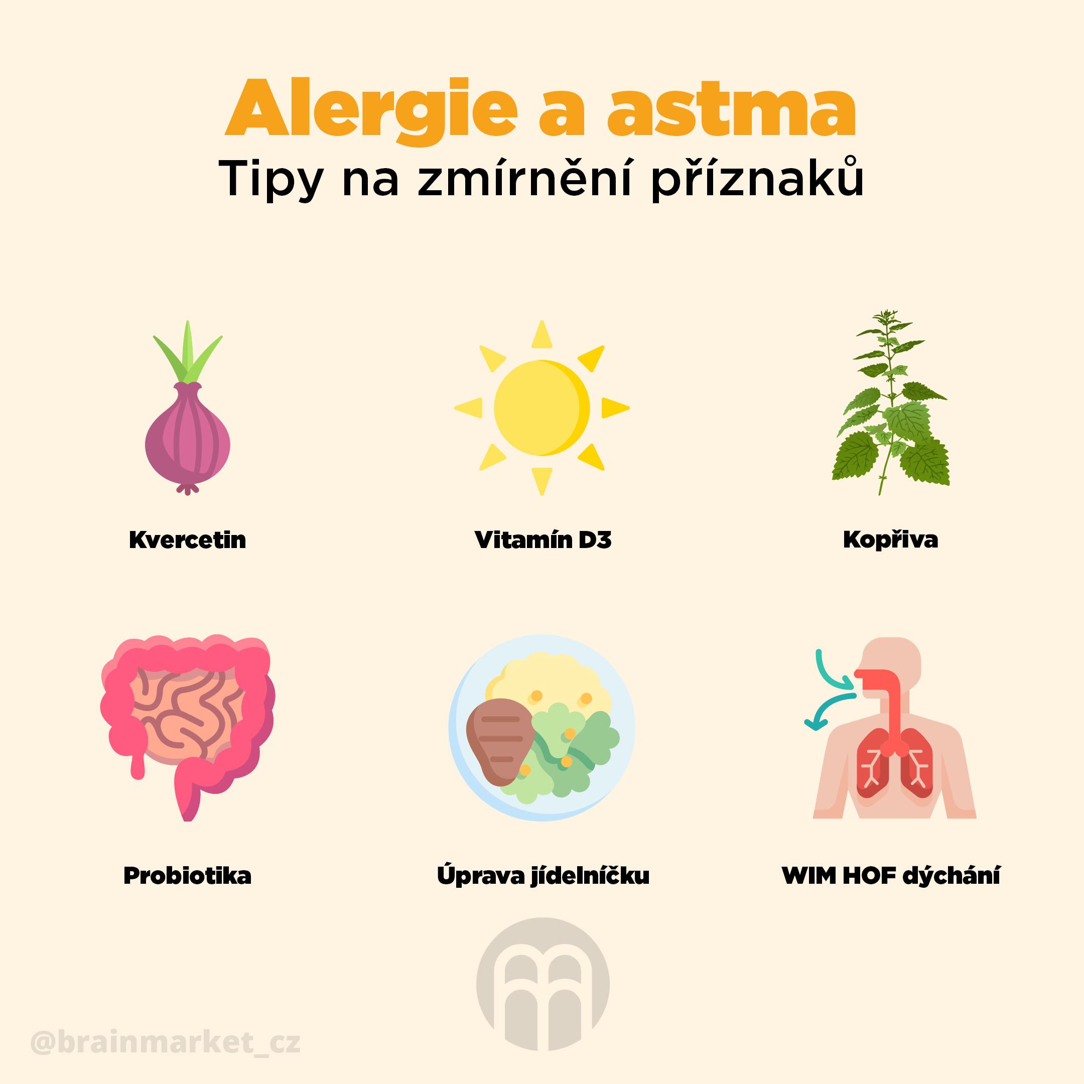 alergie_a_astma_Infografika-BrainMarket_CZ