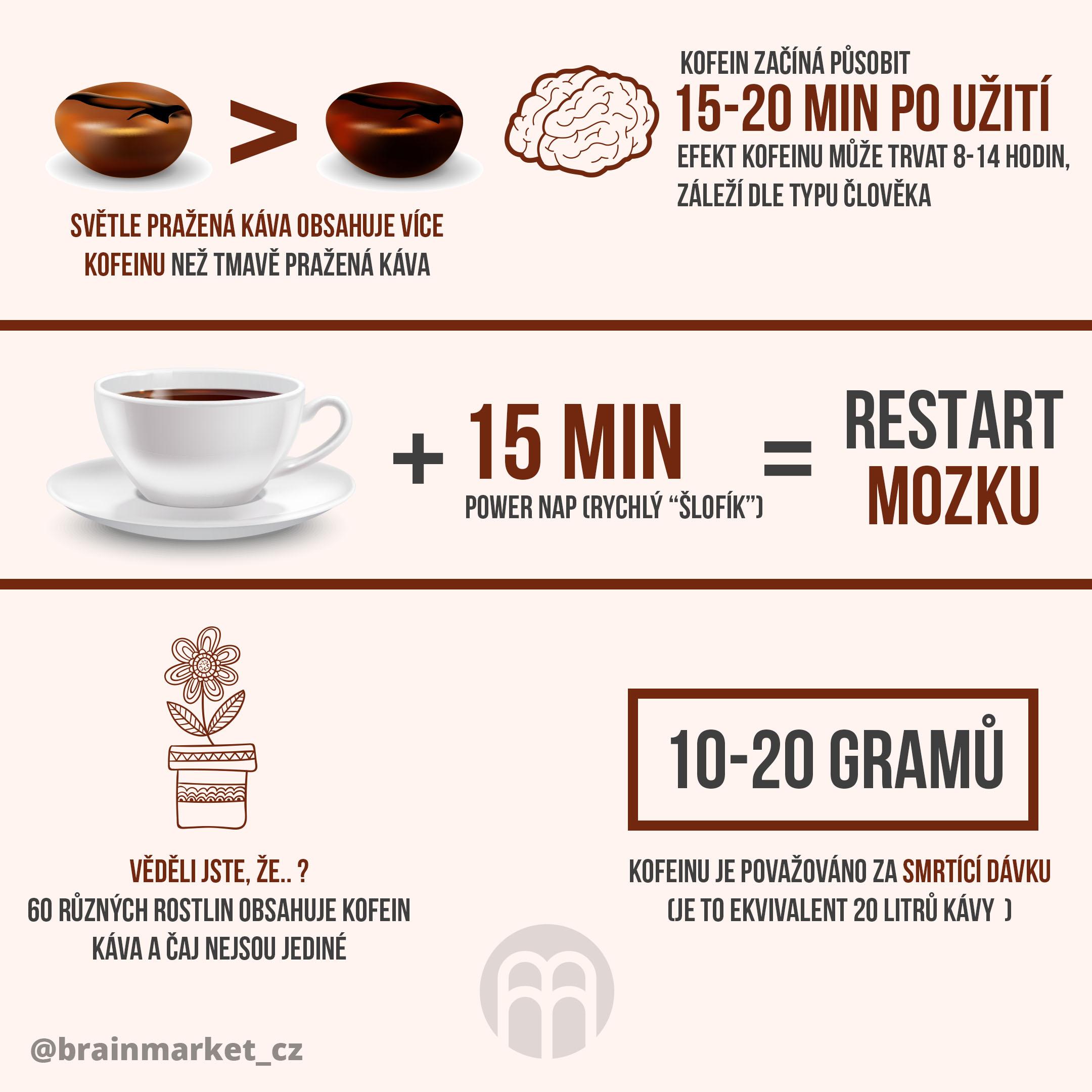 kafe-infografika