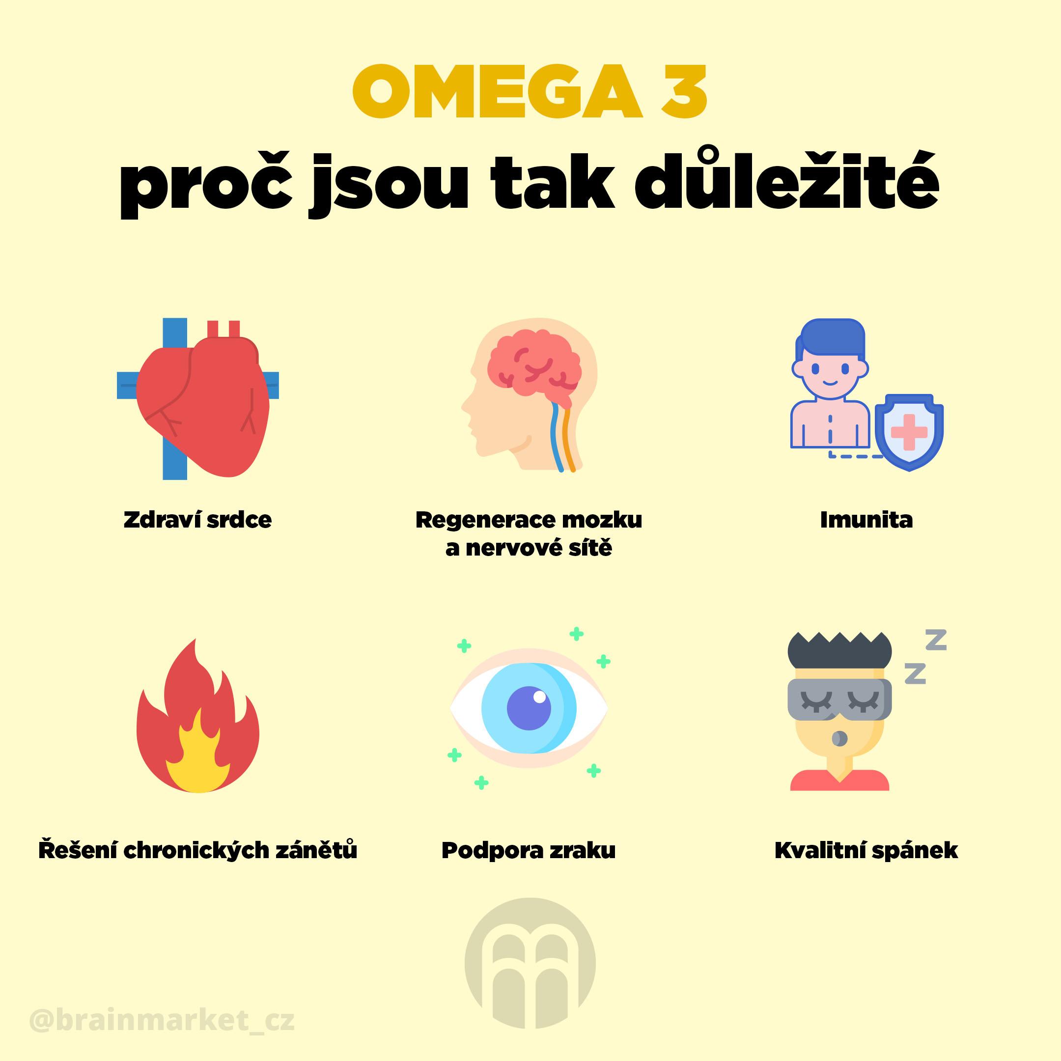 omega-3-proc-jsou-tak-dulezite-infografika-brainmarket-cz
