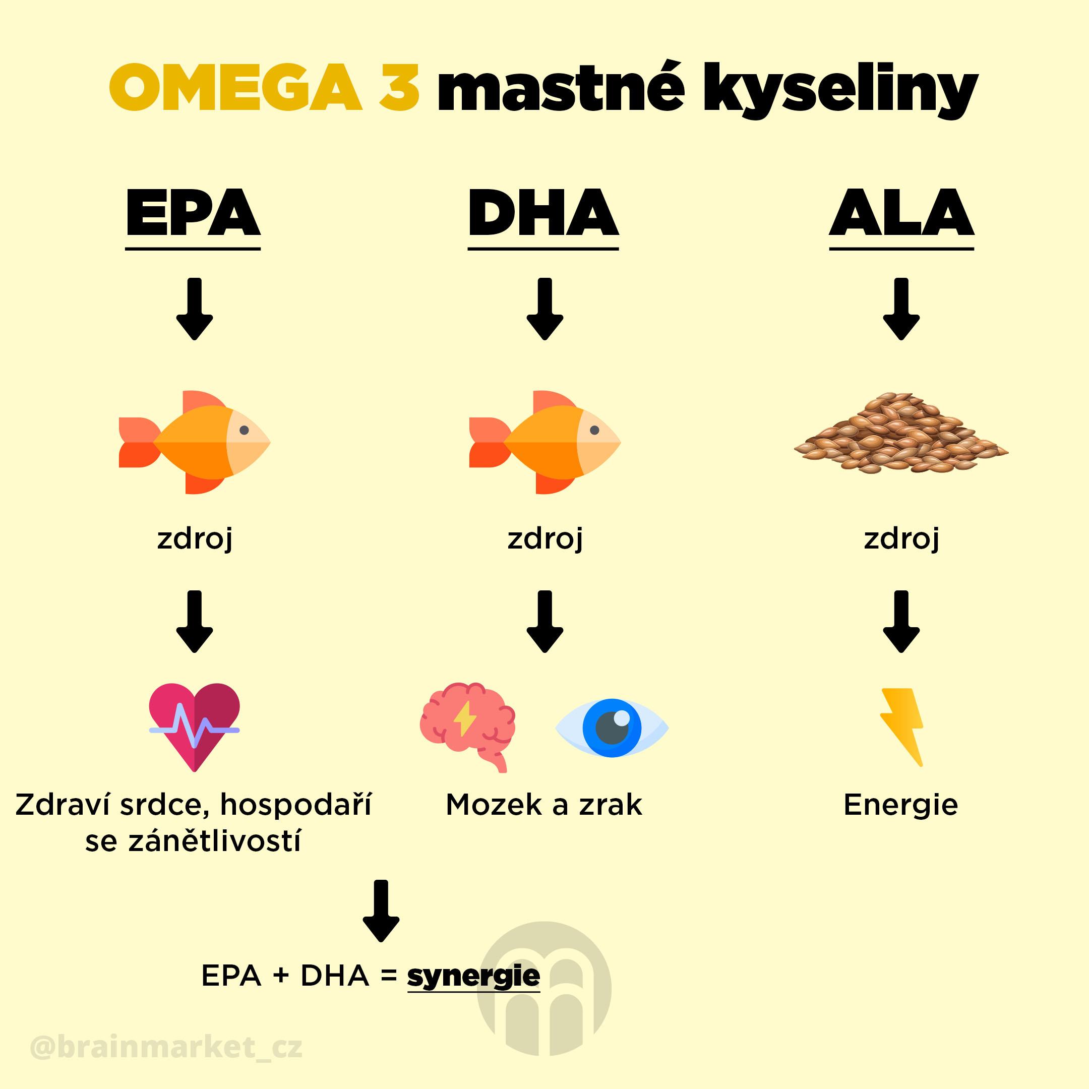 omega_3_infografika_brainmarket_CZ