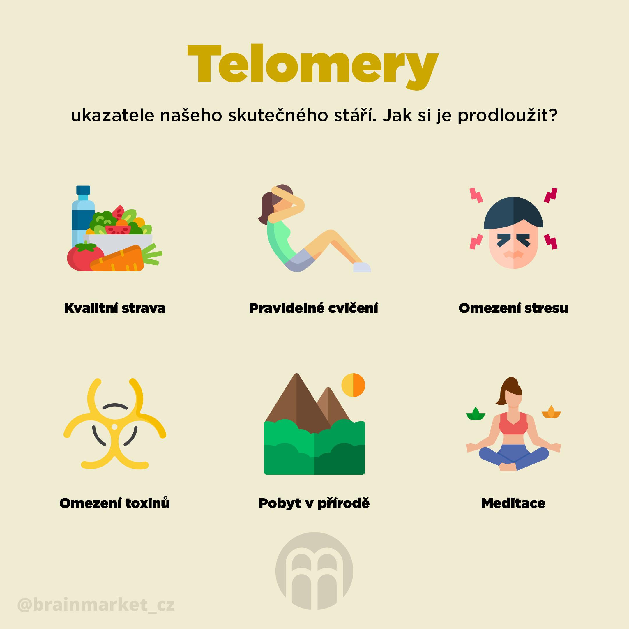 telomery_infografika_brainmarket_CZ