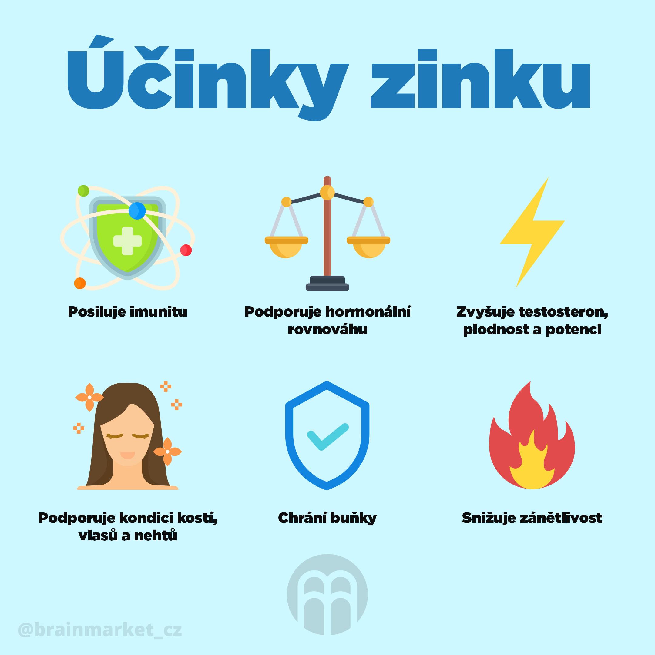 ucinky_zinku_infografika_brainmarket_CZ