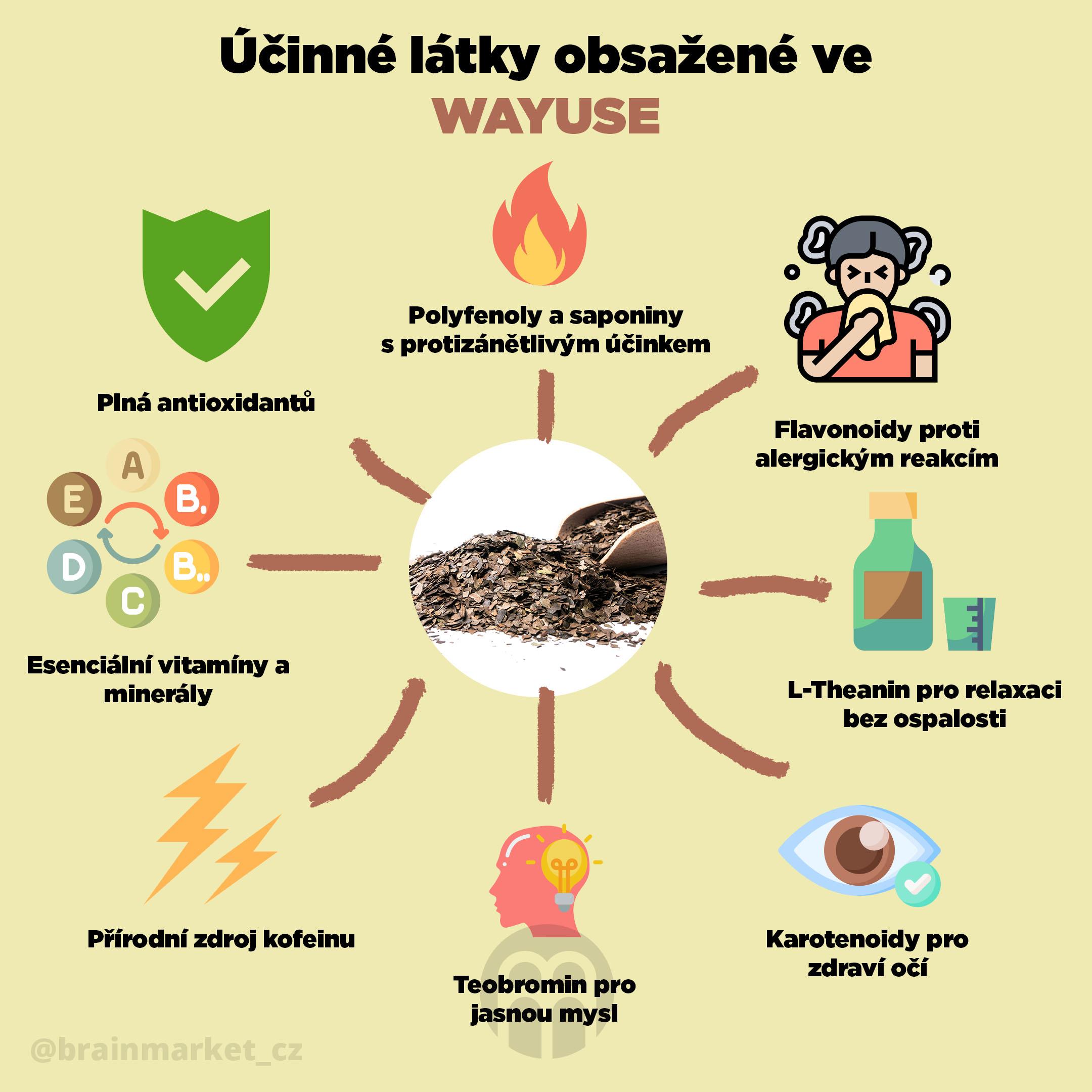 ucinne_latky_wayusa_Infografika_Instagram_BrainMarket