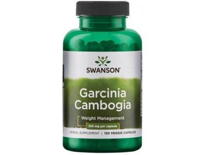 Garcinia cambogia 120 rostlinných kapslí
