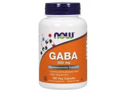 gaba500 vitaminb6