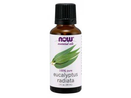 eucalyptus radiata oil
