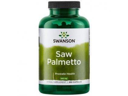 Saw palmetto 3