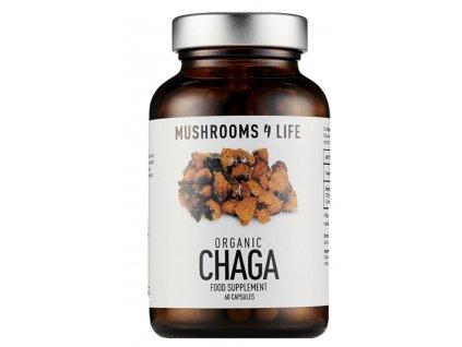 Mushrooms 4 Life Wild Chaga - Certifikovaná BIO houba, 60 kapslí