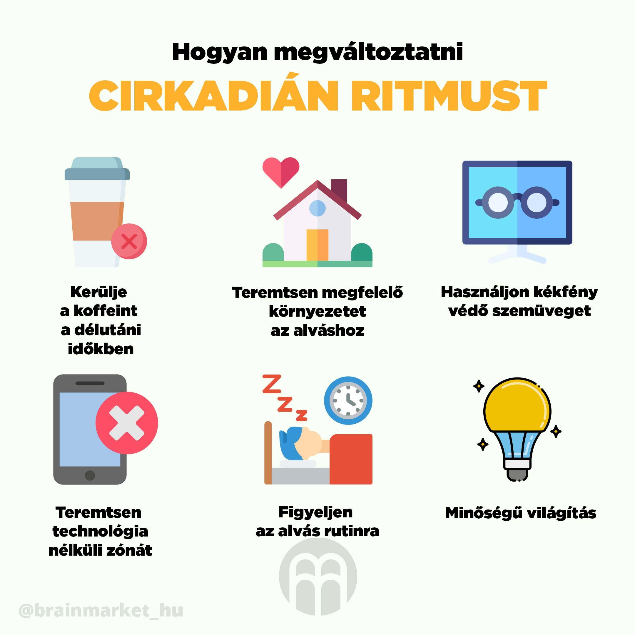 cirkadialni_rytmus_infografika_brainmarket_hu