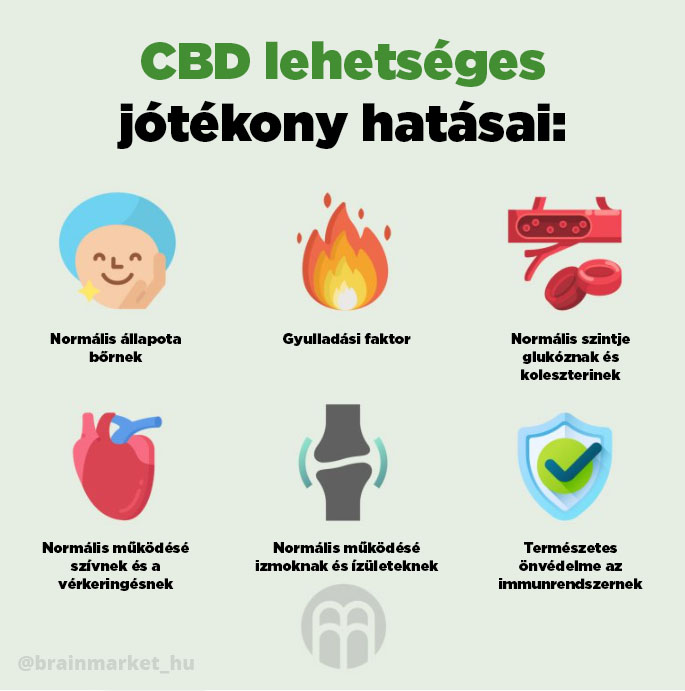 cbd_tvrzeni_infografika_brainmarket_hu
