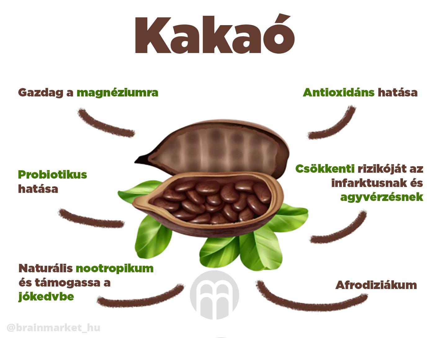 kakao_infografika_brainmarket_hu_1