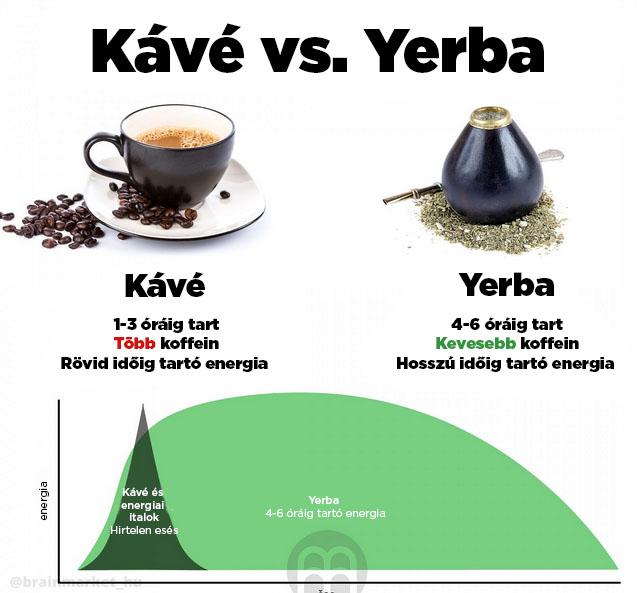 kava-vs-yerba-infografika-brainmarket-hu