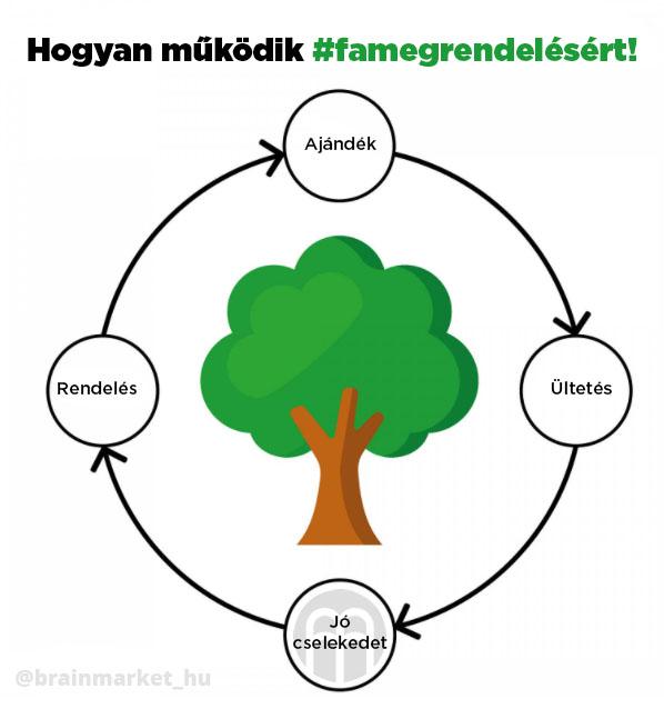 stromzaobjednavku-infografika-brainmarket-hu