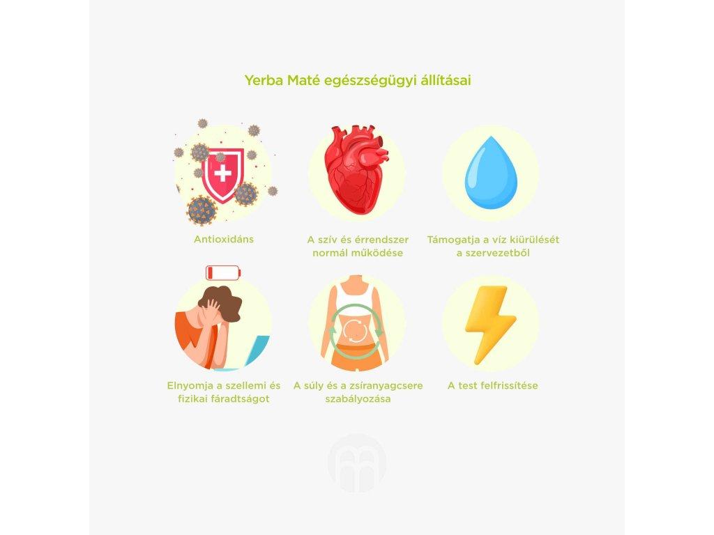 yerba energy