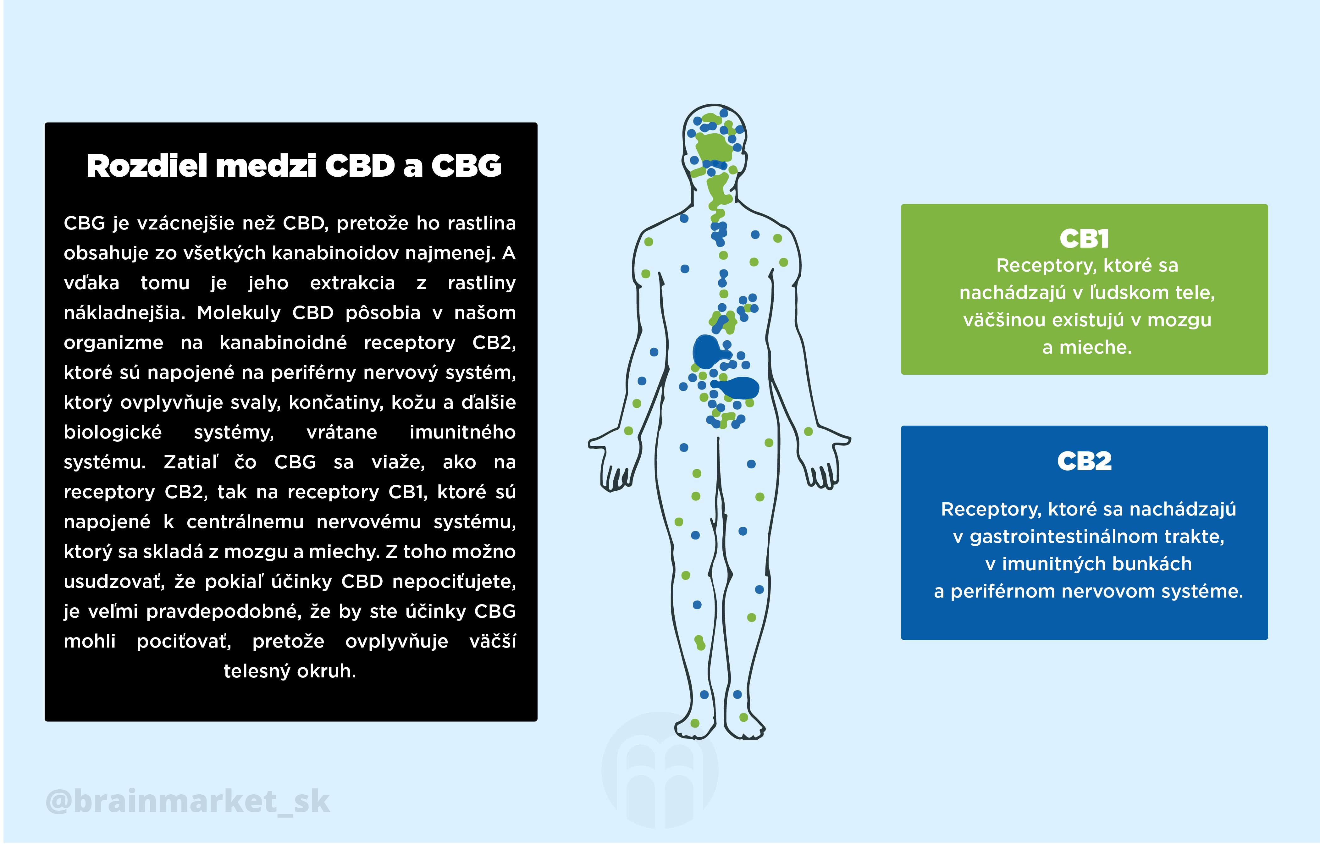 cbd-vs-cbg-infografika-brainmarket-sk