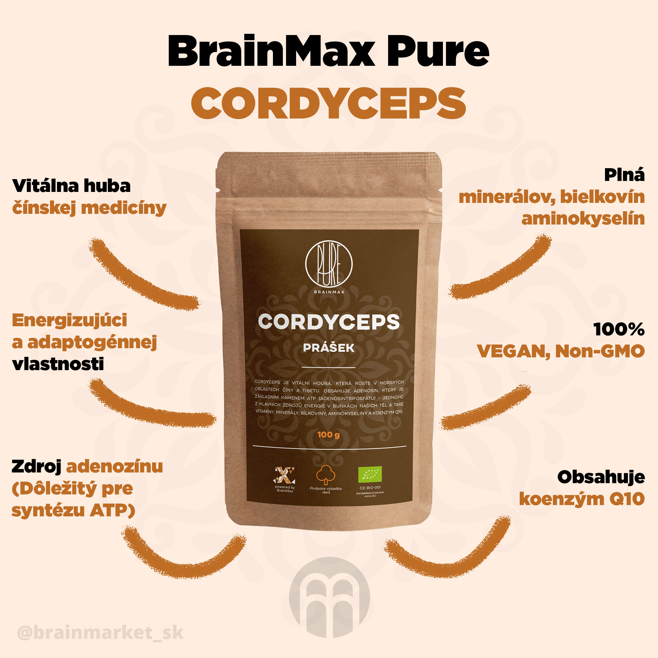 cordyceps_pavucina_infografik_brainmarket_sk
