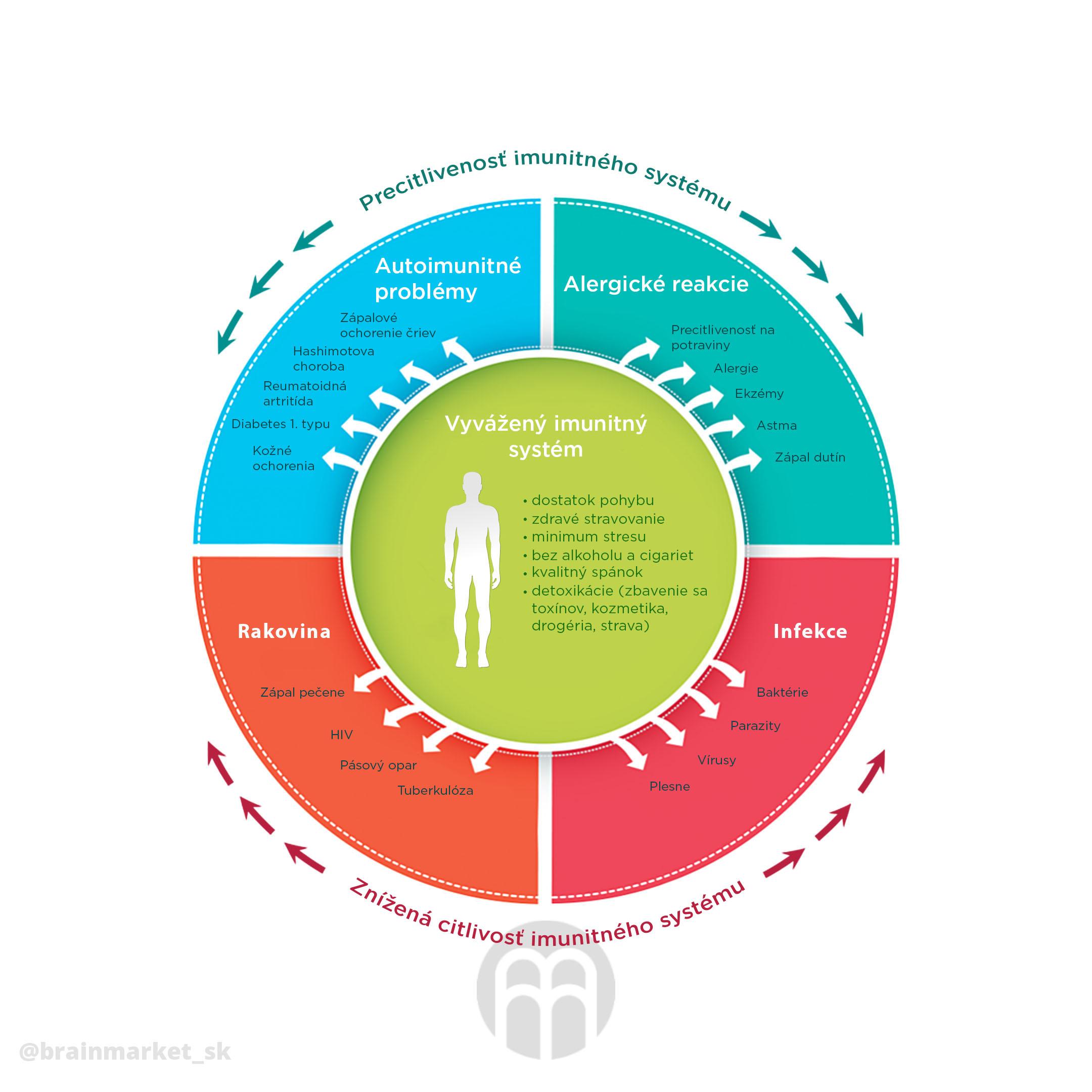 imunta-kolo-infografika-brainmarket-sk