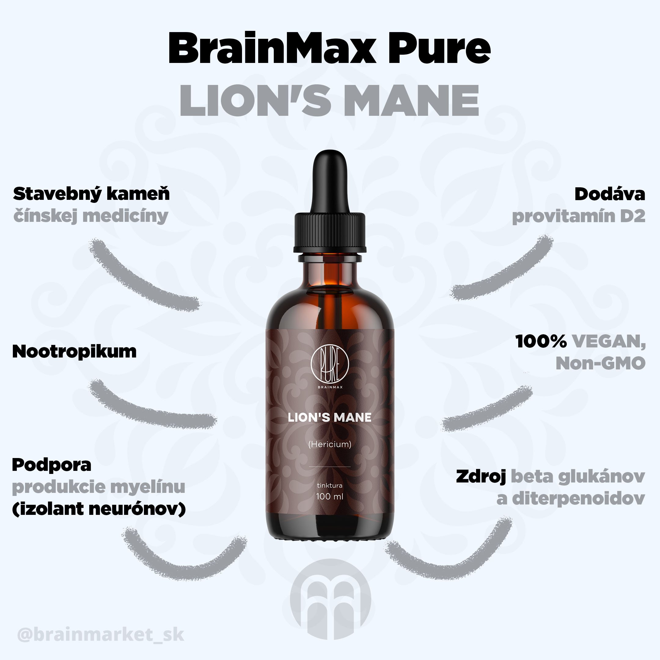 lions_mane_infografika_brainmarket_sk