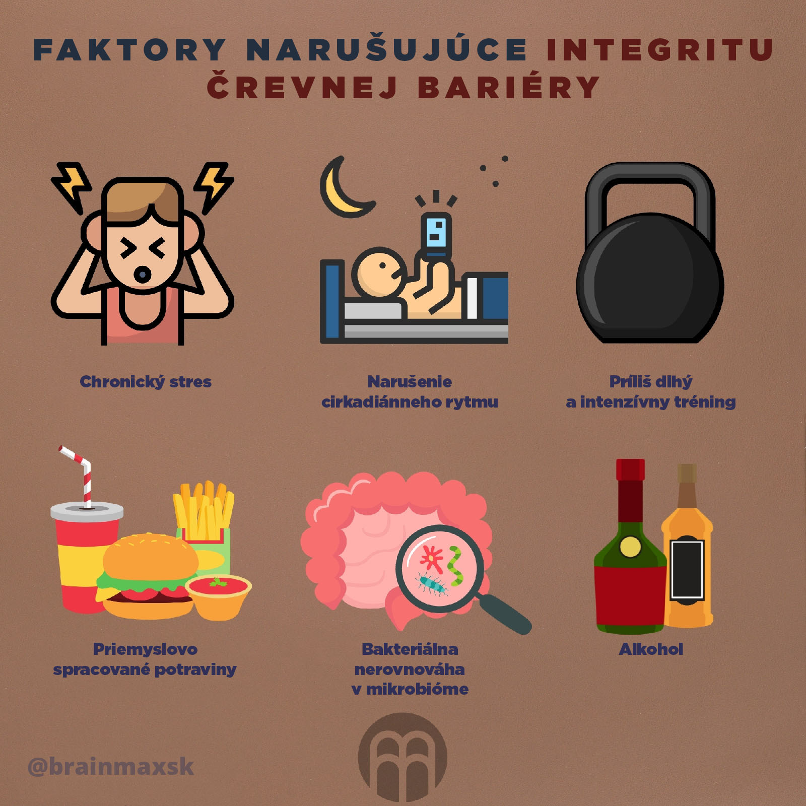 naruseni-integrity-infografika-brainmax-sk