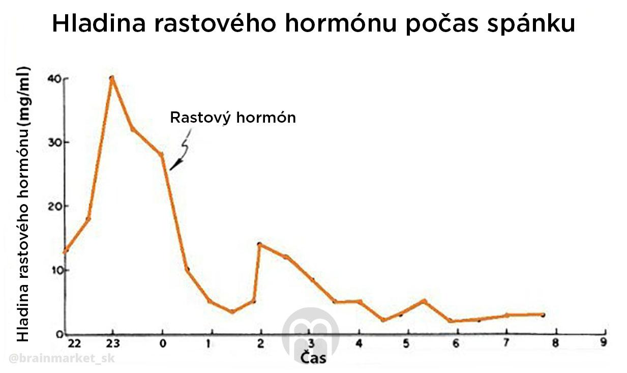 rustovy-hormon-behem-spanku-infografika-brainmarket-sk