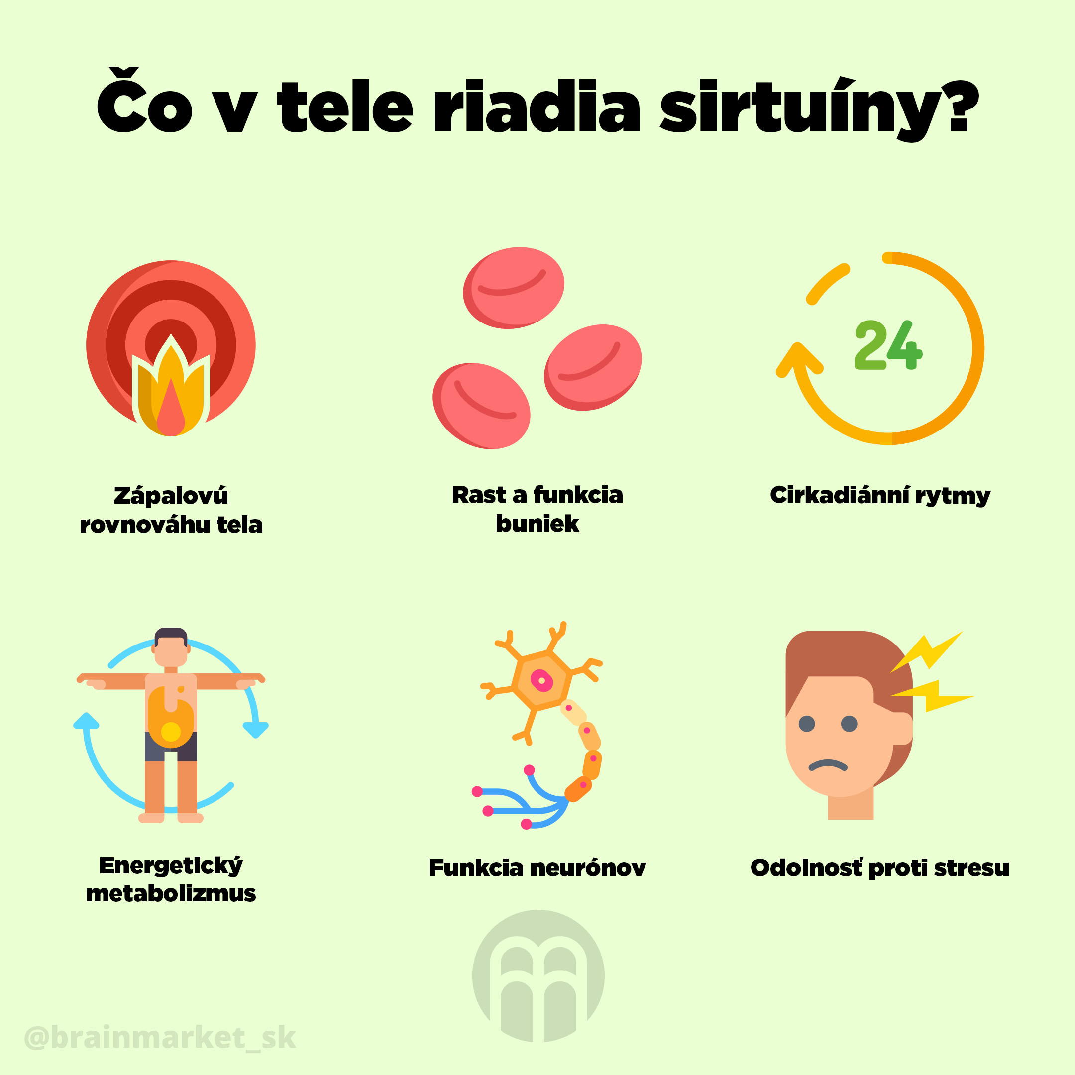 sirtuiny_brainmarket_infografika_sk