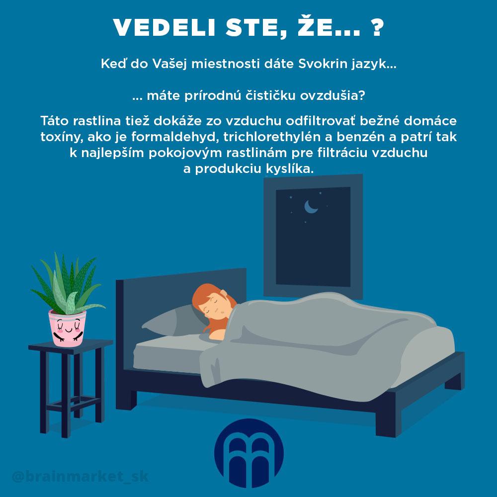 tchynin-jazyk-spanek-fix-infografika-brainmarket-sk