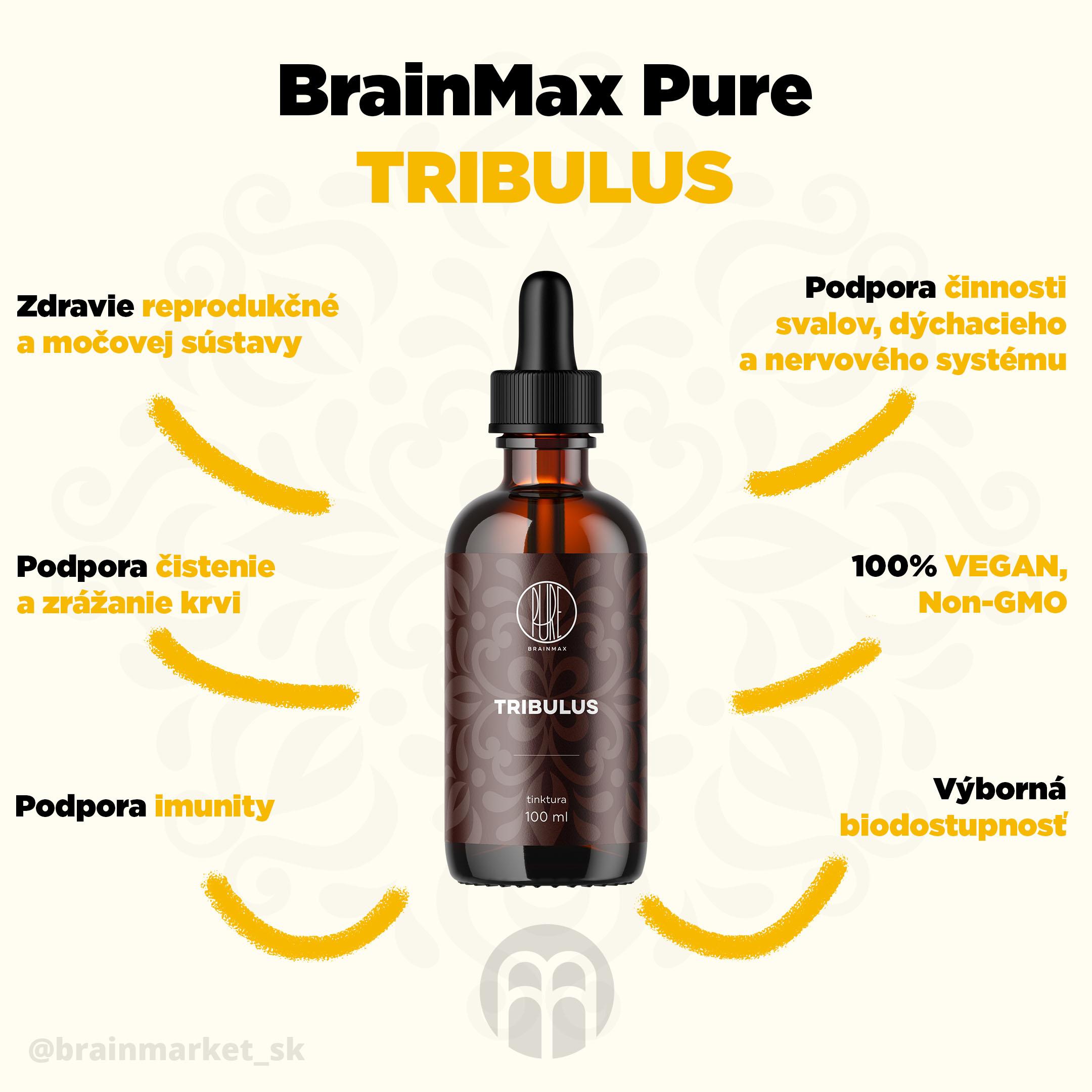 tribulus_infografika_brainmarket_sk