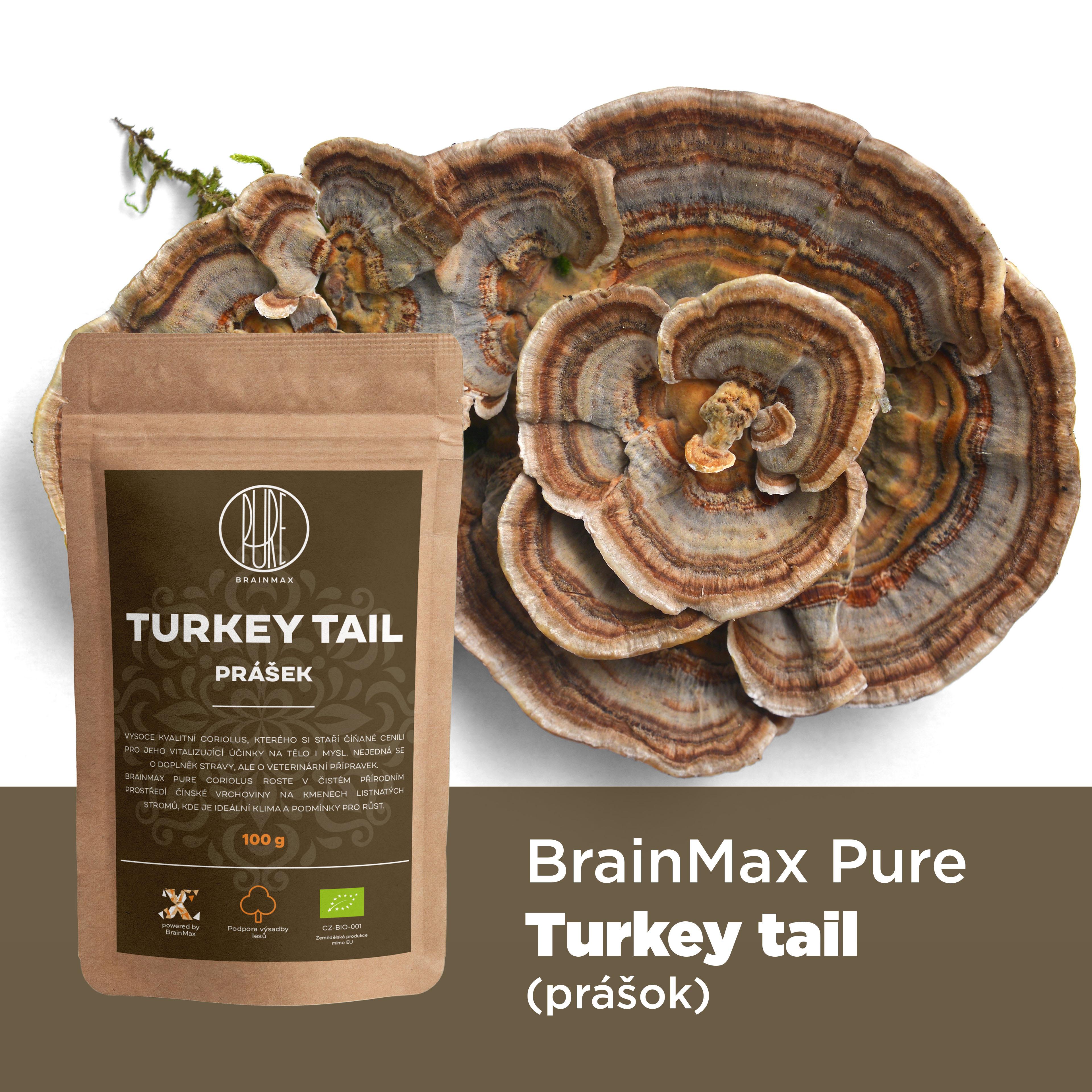 turkey_tail_infografika_brainmarket_sk