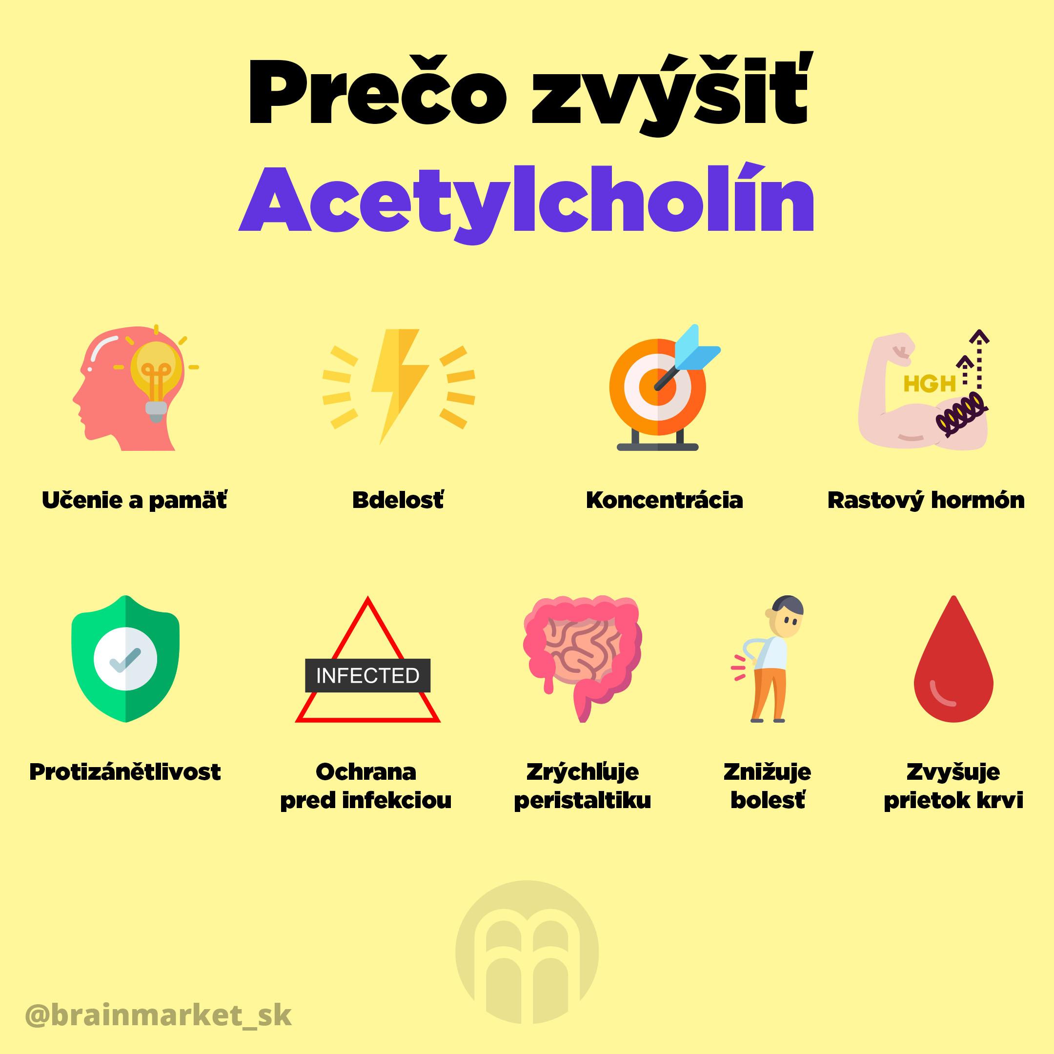 proc-zvysit-acetylcholin_SK