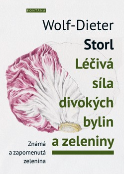 Fontána Léčivá síla divokých bylin a zeleniny - Wolf-Dieter Storl