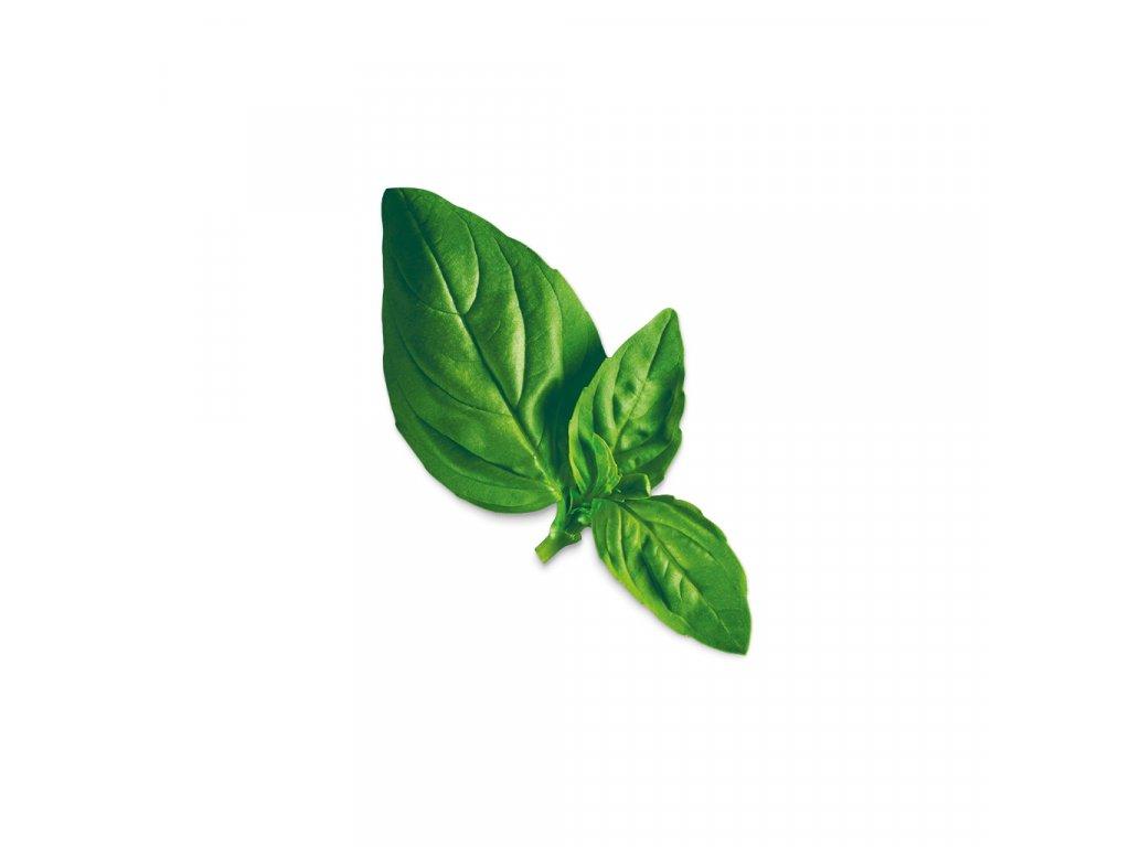 Plantui Basil Lemon, 3 kapsle, bazalka citrónová