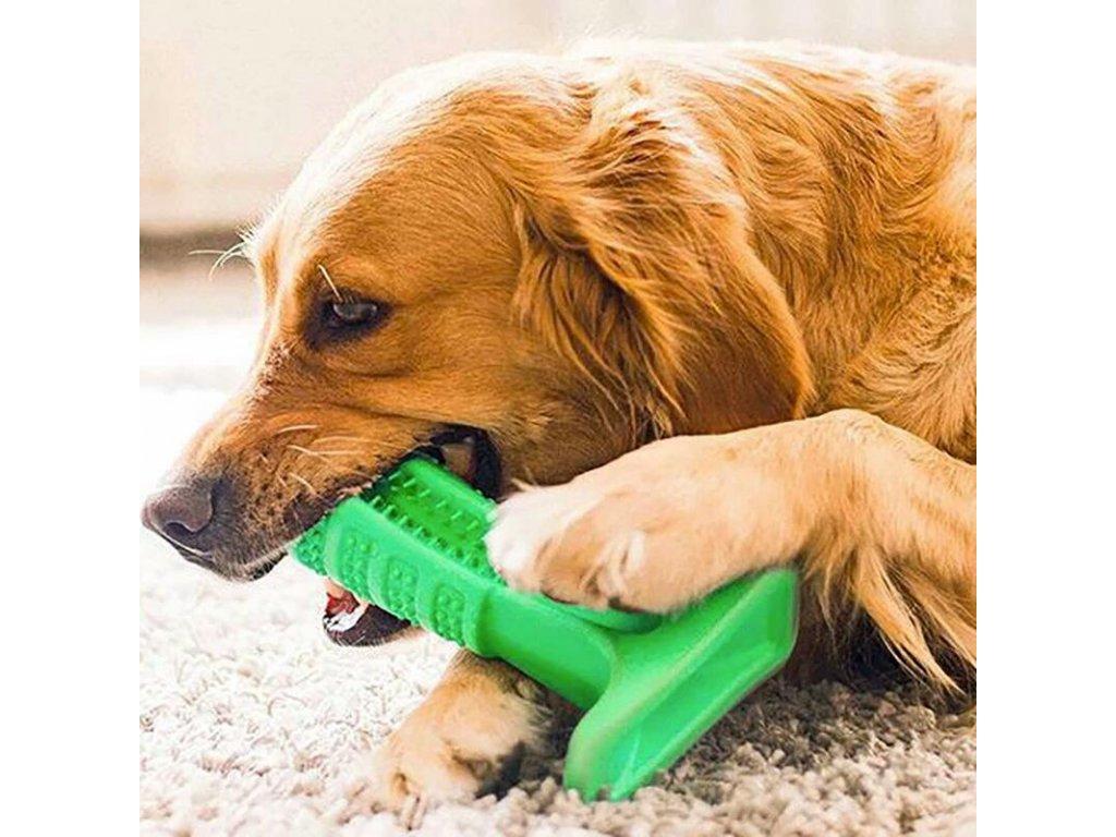 Silikónový kefka pre psov