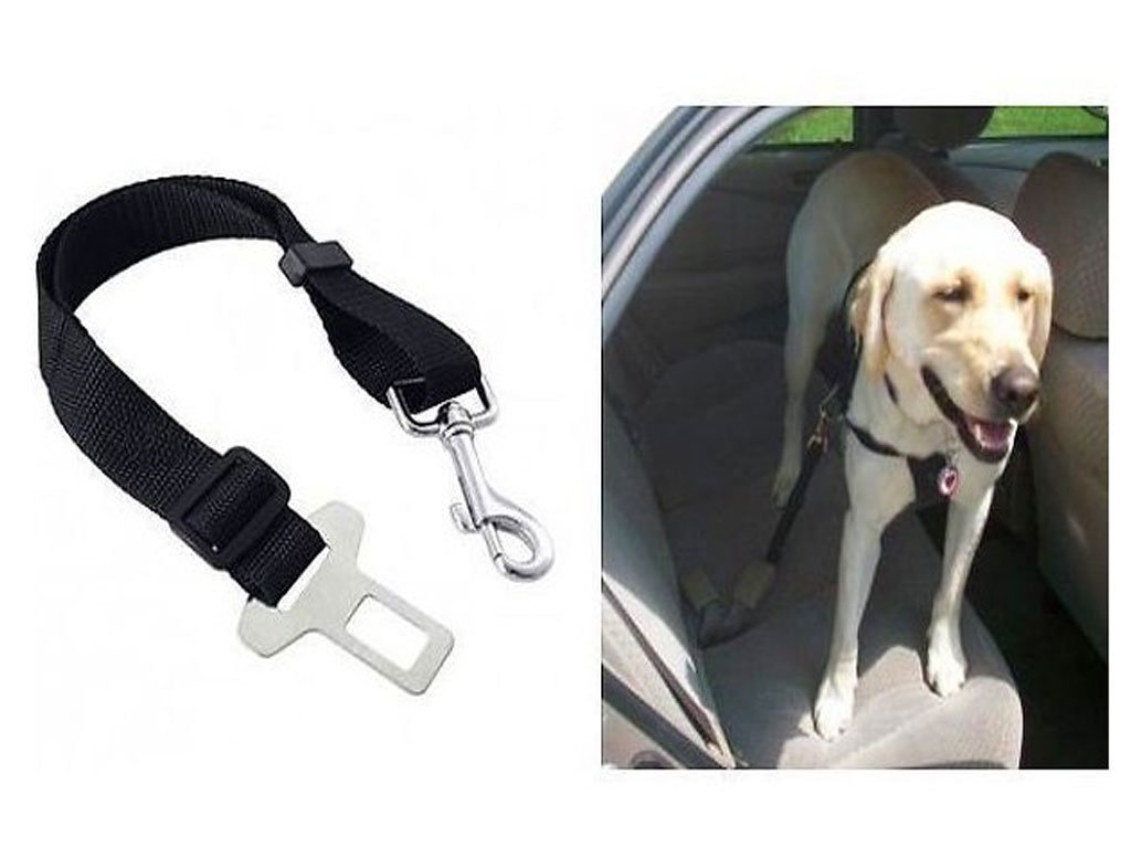 107057 0002189 bezpecnostni pas pro psa