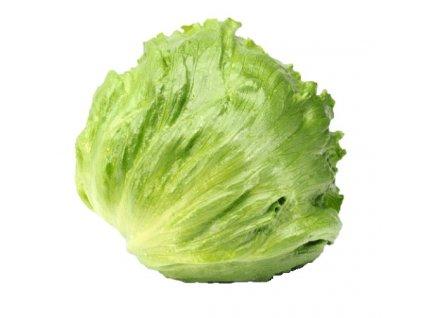 M iceberg lettuce
